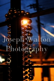 Joseph Walton Photography 22