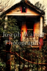 Joseph Walton Photography 24